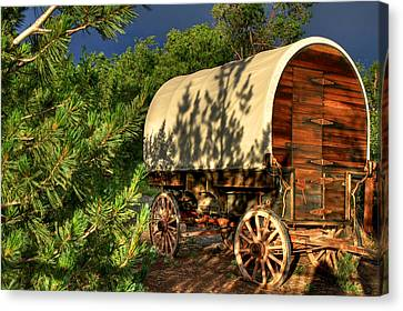 Sheep Herder's Wagon Canvas Print by Donna Kennedy