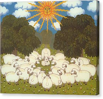 Sheep  Canvas Print by Ditz