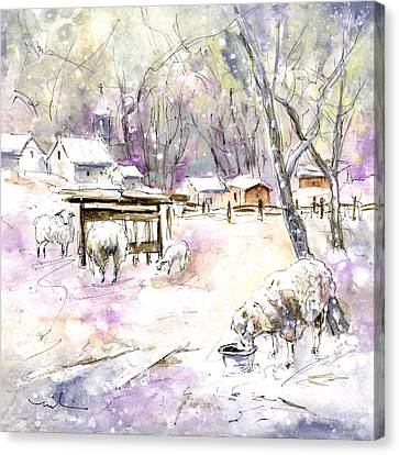 Sheep In Snow In Germany Canvas Print by Miki De Goodaboom