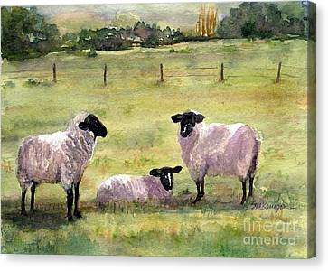 Sheep In The Meadow Canvas Print