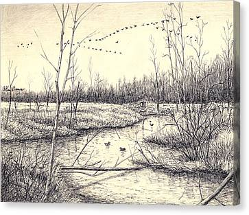 Ink Drawing Canvas Print - Shelby Swamps/ by Arthur Barnes