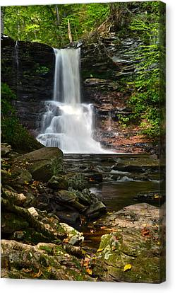 Sheldon Reynolds Canvas Print by Frozen in Time Fine Art Photography