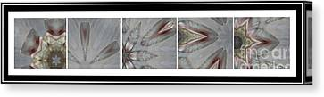 Shell Shock Pink Pentaptych  Canvas Print by Barbara Griffin