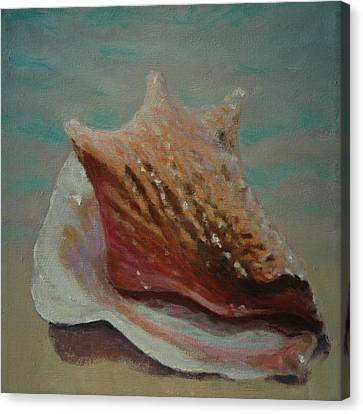 Shell Three - 3 In A Series Of 3 Canvas Print by Don Young