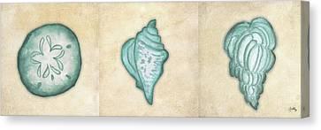 Shells II Canvas Print by Elizabeth Medley