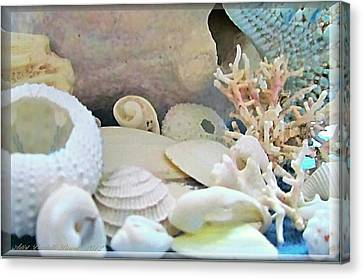 Shells In Pastels Canvas Print by Danielle  Parent