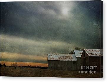 Shelter Canvas Print by Terry Rowe