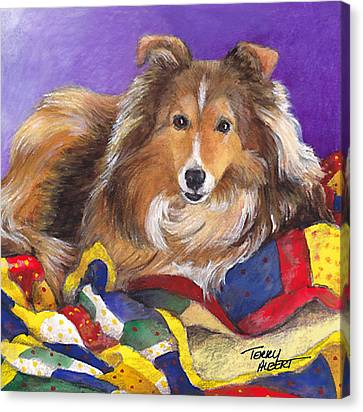 Sheltie On Quilt Canvas Print