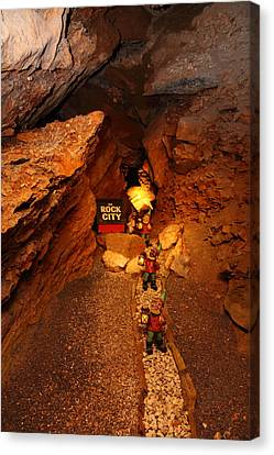 Shenandoah Caverns - 121210 Canvas Print by DC Photographer