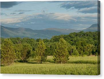 Shenandoah Valley May View Canvas Print by Lara Ellis