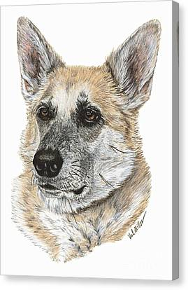 Canvas Print featuring the drawing Shepherd Beauty by Val Miller