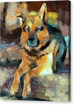 Shepherd Canvas Print by Yury Malkov