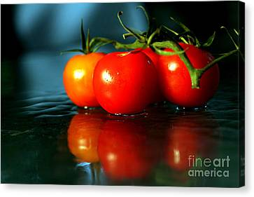 Sherry Tomatoes Canvas Print by Arie Arik Chen