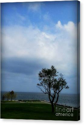 Canvas Print featuring the photograph Sherwood Island by Kristine Nora