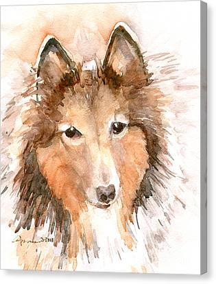 Shetland Sheepdog Canvas Print by Claudia Hafner