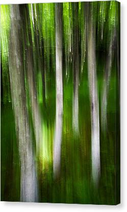Shifted Perspective Canvas Print by Serge Skiba