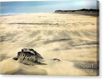 Shifting Sands On Ocracoke Outer Banks Canvas Print by Dan Carmichael