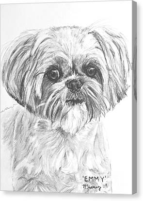Shih Tzu Portrait In Charcoal Canvas Print