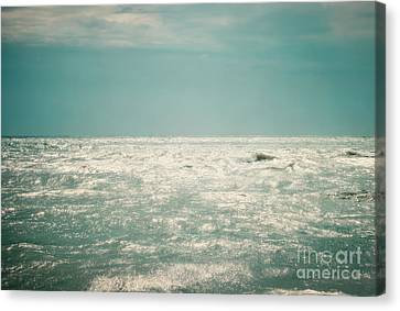 Shimmer Canvas Print by Sharon Coty