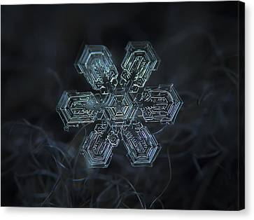 Snowflake Photo - Shine Canvas Print