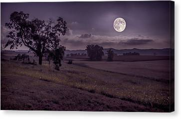 Canvas Print featuring the photograph Shine On Harvest Moon by Jaki Miller