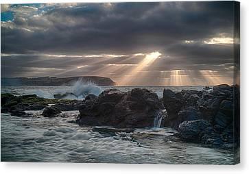 Shine On Canvas Print by Shari Mattox