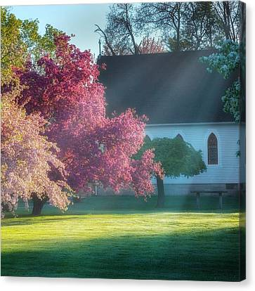 Shine The Light On Me Square Canvas Print by Bill Wakeley