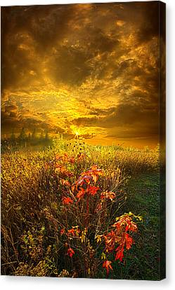 Shine Your Light For The World To See Canvas Print by Phil Koch