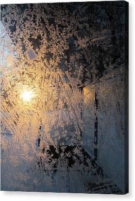 Shines Through And Illuminates The Day Canvas Print