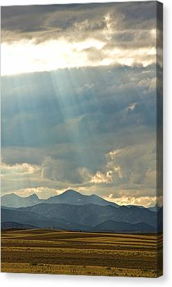 Shining Down Canvas Print by James BO  Insogna
