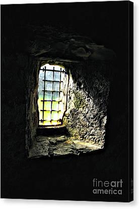 Shining Through Canvas Print by Louise Peardon