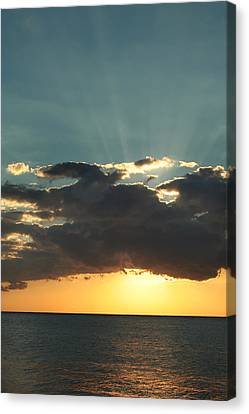Shining With Love Canvas Print by Laurie Search