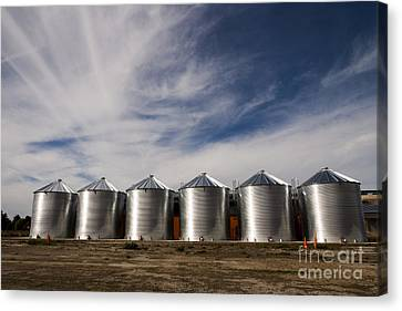 Shiny Silos Canvas Print