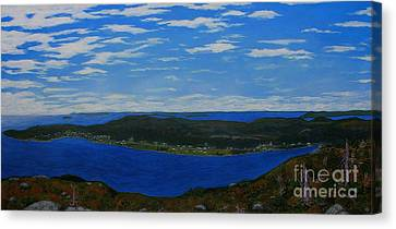Ship Harbour From Sugarloaf Hill Canvas Print by Barbara Griffin