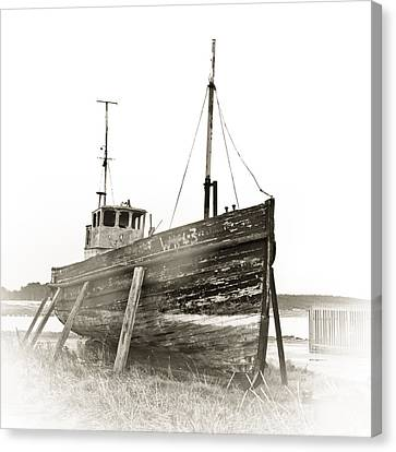 Ship Wreck Canvas Print by Tom Gowanlock