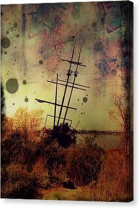Shipwreck Canvas Print by Tracy Munson