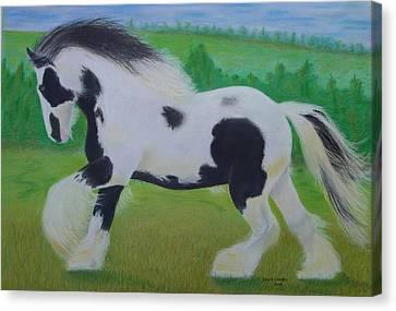 Shire Horse Canvas Print by David Hawkes