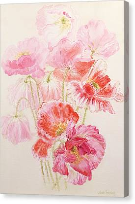 Shirley Poppies Canvas Print by Joan Thewsey