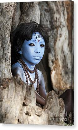 Shiva Boy Canvas Print by Tim Gainey