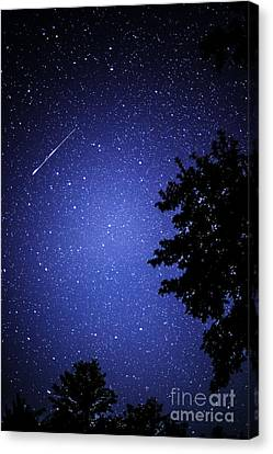 Shooting Star And Satellite Canvas Print by Thomas R Fletcher