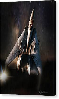 Shooting Star Canvas Print by Peter Chilelli