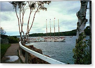 Shore Path In Bar Harbor Maine Canvas Print by Judith Morris