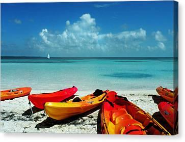 Shore Rest Canvas Print