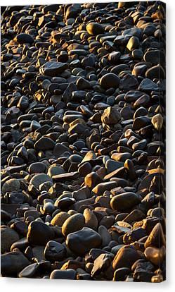 Shore Stones Canvas Print by Steve Gadomski