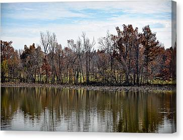 Canvas Print featuring the photograph Shoreline 2 by Greg Jackson