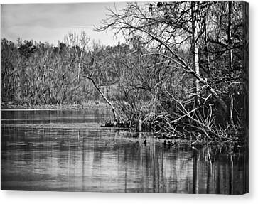 Canvas Print featuring the photograph Shoreline 4 by Greg Jackson