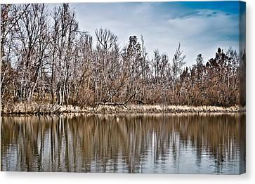 Canvas Print featuring the photograph Shoreline 5a by Greg Jackson