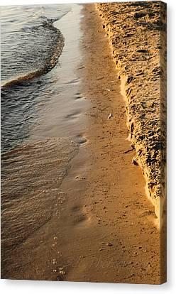 Shoreline Canvas Print by BandC  Photography