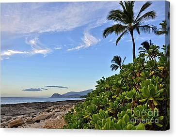 Canvas Print featuring the photograph Shores Of Paradise by Gina Savage