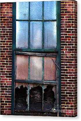 Shot Out  Canvas Print by Colleen Kammerer